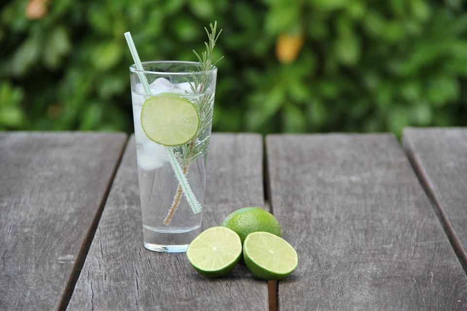 Dit moet je weten voordat je een gin-tonic maakt!