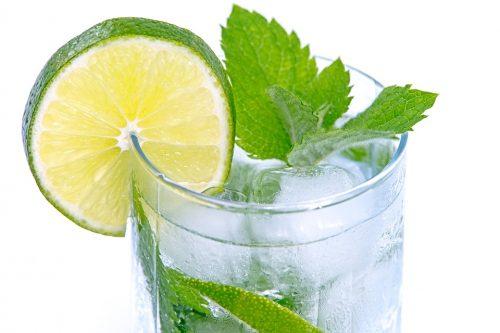gin tonic garneren